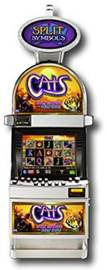 Cats Slot Machine at Land Based Casinos