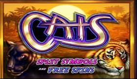 Cats Slot Introduction